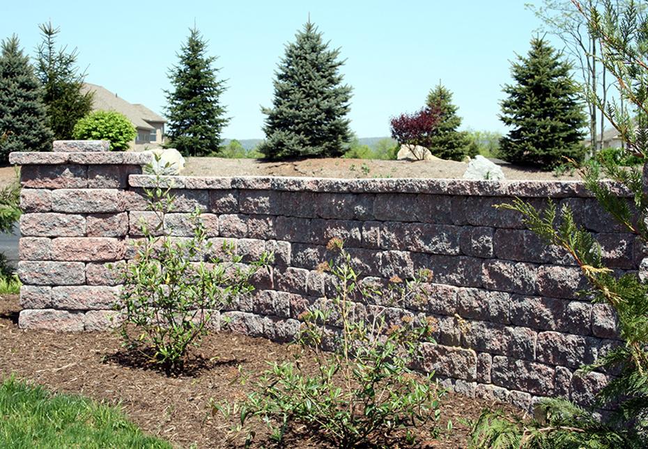 Napa Wall in Auburn