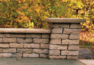 Rosetta Dimensional Wall & Dimensional Coping in Saddle