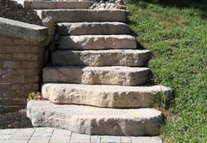 Irregular Steps in Saddle